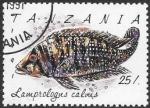 Sellos del Mundo : Africa : Tanzania :  peces