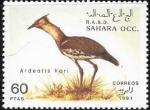 Sellos del Mundo : Africa : Marruecos :  aves