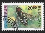 Sellos de Europa - Bulgaria -  Insectos, Pied Hoverfly (Scaeva pyrastri)
