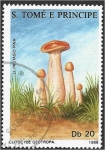 de Africa - Santo Tomé y Principe -  Hongos 1988, Clitocybe geotropa