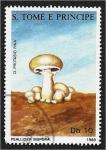 de Africa - Santo Tomé y Principe -  Hongos 1988, Psalliota bispora