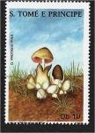 de Africa - Santo Tomé y Principe -  Hongos 1988, Volvaria volvacea