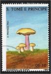 de Africa - Santo Tomé y Principe -  Hongos 1988, Rhodopaxillus nudus