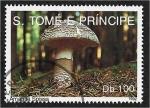 de Africa - Santo Tomé y Principe -  Hongos 1992, Amanita Spissa