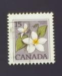 Sellos del Mundo : America : Canadá :  Flores