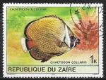 Sellos del Mundo : Africa : República_Democrática_del_Congo : Peces - Chaetodon collare)