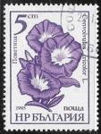 Sellos de Europa - Bulgaria -  Iris Germanica