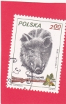 Sellos del Mundo : Europa : Polonia : Caza del Jabalí Salvaje