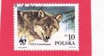 Sellos del Mundo : Europa : Polonia : Cabeza de lobo (Canis lupus)