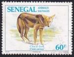 Sellos del Mundo : Africa : Senegal :  chacal dorado