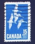 Sellos de America - Canadá -  Gansos