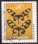 Sellos del Mundo : Europa : Alemania :  Papilio hahneli