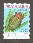de America - Nicaragua -  RESERVADO DAVID MERINO