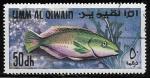 Sellos del Mundo : Asia : Emiratos_Árabes_Unidos : Parrotfish (Scarus sp.)