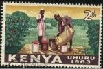 Sellos del Mundo : Africa : Kenya : Industria del café de KENIA. Año de la independencia 1963. Uhuro 'libertad'.