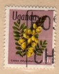 Sellos del Mundo : Africa : Uganda : 1969 Plantas: Cassia didymobotrya