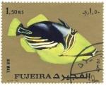 Sellos del Mundo : Asia : Emiratos_Árabes_Unidos :  pez exotico