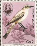 Sellos del Mundo : America : Paraguay :  Pajaros Audubon
