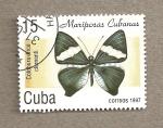 Sellos de America - Cuba -  Mariposa Colobura circe