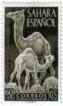 Sellos de Europa - España -  Sahara Español. Día del sello 1951