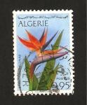 Sellos del Mundo : Africa : Argelia : flor strelitzia reginae