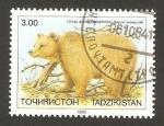 Sellos del Mundo : Asia : Tayikistán : fauna, ursus arctos isabellinus