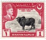 Sellos del Mundo : Asia : Pakistán : Bodas de plata  1924-1949. Gran toro Sahiwal