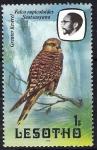 Sellos del Mundo : Africa : Lesotho : Aves. Halcón. Falco rupicoloides Seotsanyana.